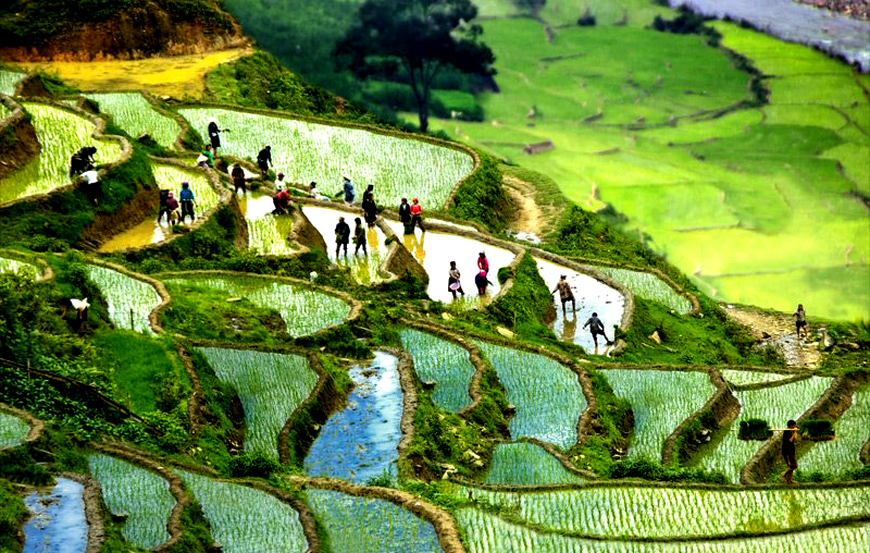 Sapa Tours - North Vietnam